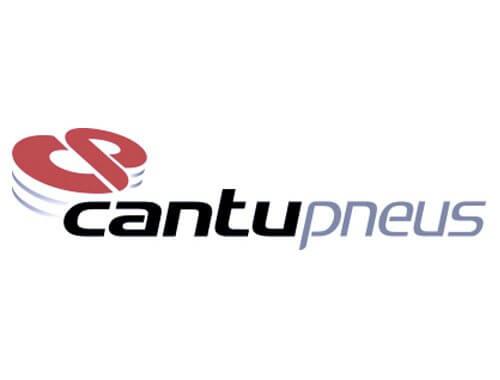 Logo Cantupneus 500x380